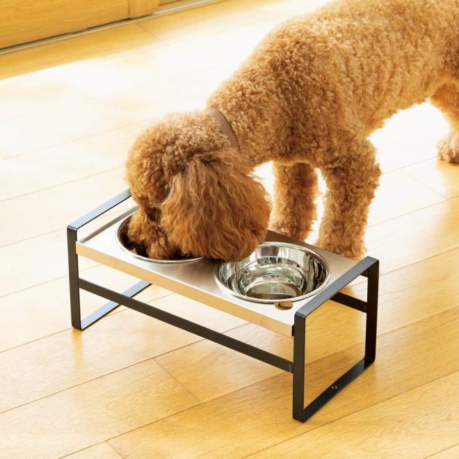 高さが変えられるペット用フードスタンド 中型犬用 (イ)ダークグレー ※「高」に組み立てた状態。ペットの体型に合わせて高さを2段階に組み替えられます。※画像は小型犬・猫用です。