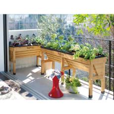 木製菜園プランター ベジトラグ L