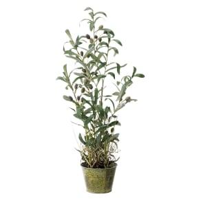 人工観葉植物オリーブ 高さ68cm 鉢カバーなし 写真