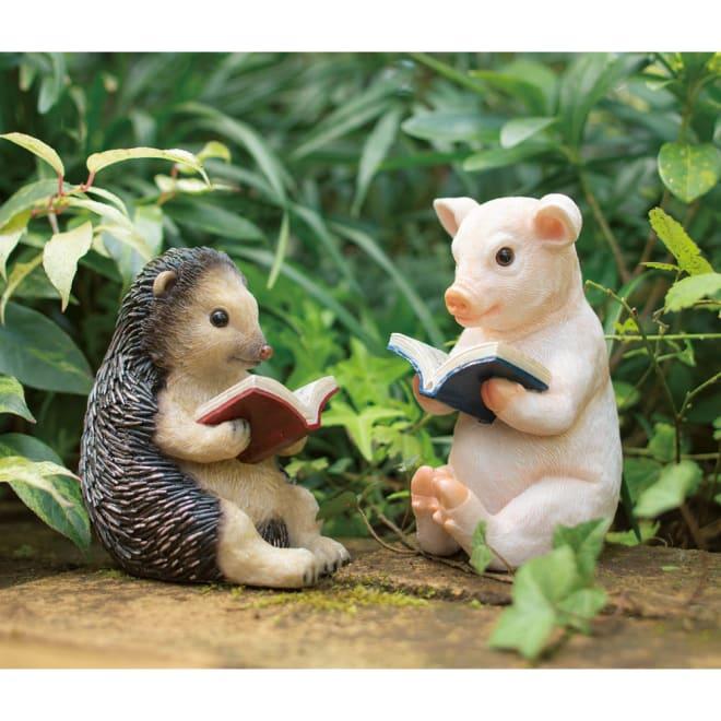 読書ピッグ&ハリネズミ 2匹セット 2匹セット