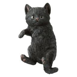 ひっかけ子猫 (ウ)黒