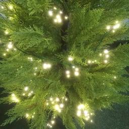 人工観葉植物ゴールドクレスト&LEDクラスターライトセット 人工観葉植物ゴールドクレスト1本180cm+ライト400球