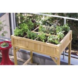 ハーブ用菜園プランター ベジトラグ 大型(8コマ) (ア)ナチュラル