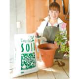 ディノスオリジナル培養土 バイオゴールド×吉谷桂子×dinos  バイオゴールドソイル 18L 写真