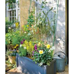 アイアンフラワーカーテン〈セージグリーン〉 フラワーカーテン 深さのある鉢に脚を挿せば安定感がアップ