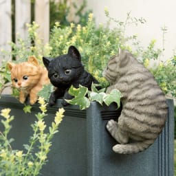 ひっかけ子猫 左から(ア)茶トラ (ウ)黒 (イ)グレー