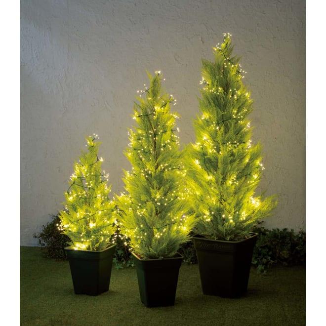 人工観葉植物ゴールドクレスト&LEDクラスターライトセット 人工観葉植物ゴールドクレスト1本120cm+ライト400球 写真は左から高さ90cm、高さ120cm、高さ150cm。お届けは高さ120cmのセットです。