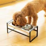 高さが変えられるペット用フードスタンド 小型犬・猫用 写真
