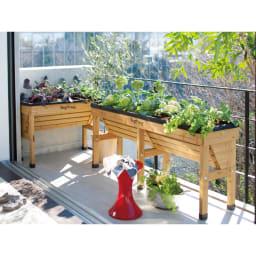 菜園プランター ベジトラグ 省スペースサイズS (使用例) (ア)ナチュラル ※写真は(左)Sサイズ (右)Lサイズです。