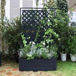 欧風トレリス付きプランターボックス〈ダークグレー〉 高さ161cm お庭に1台置けば華やかに空間を彩ります。