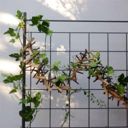 プランター台付きワイドトレリス ロータイプ つる性の植物が絡みやすい格子デザイン。