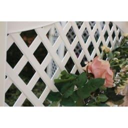 ドイツ製フェンス本体 2枚組 薔薇の映えるラティスデザイン。