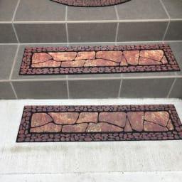 ドイツ製玄関&階段マット お得な玄関&階段3枚組 (ア)ブラウン