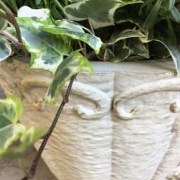 寄せ植えが映える! ローズ柄オーバルプランター