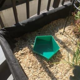 HAXNICKS スラグバスターズ4個組 土の中に容器を埋めてビールなどを入れます