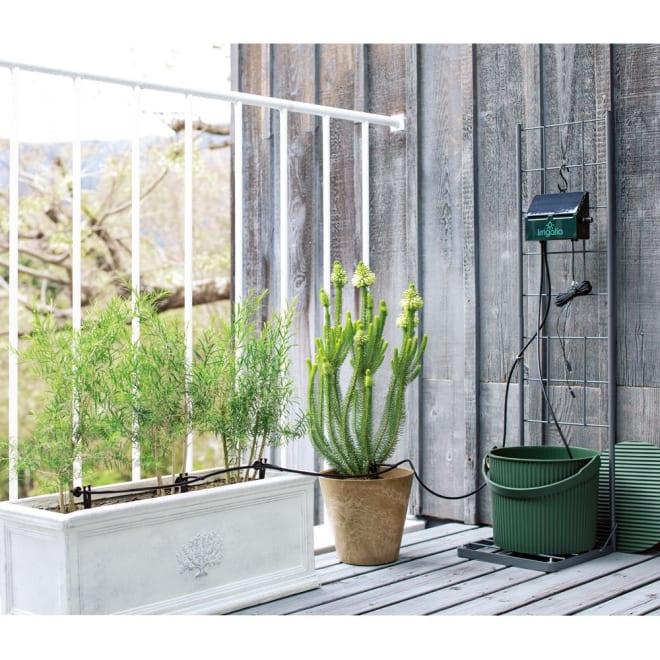 英国企画ソーラー自動灌水機 スタンドセット 単体+専用スタンドセット