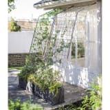 アイアングリーンカーテン〈奥行広々ハイタイプ〉 プランター台付き 写真
