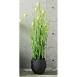 和モダンインテリアグリーンシリーズ ボールグラス153cm 本体+鉢セット 写真