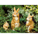 リアルほっぺウサギ 3匹組 写真