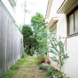ウォールフラワートンネル 1枚 鉢は置いているものの、園芸をする場所としては活用できていない通路スペース。