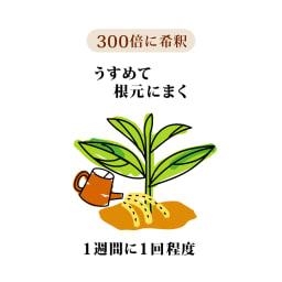 バイタルV-RNA 根・土壌集中活性液(380cc)