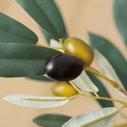 CT触媒インテリアグリーン オリーブ 2色の実と葉の独特な色合いが印象的。