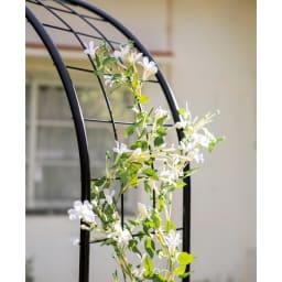 サイズと絡めやすさにこだわったアーチ 1本 誘引しやすく植物がきれいに見えます。