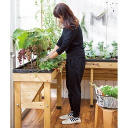 50周年オリジナルカラー菜園プランター ベジトラグ バルコニー ※画像はナチュラル色です。(申込番号G90806)