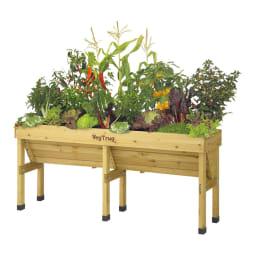 菜園プランター ベジトラグ 省スペースサイズL ※写真はLサイズです。