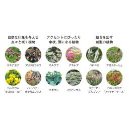 アンティーク風プランターカバー 2個組 日本でもうまく育てられるナチュラリスティックプランツ