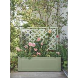 欧風トレリス付きプランターボックス〈セージグリーン〉 高さ161cm 吉谷さんセレクトカラー
