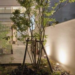 ひかりノベーション 追加ライト (イ)壁の光点灯時