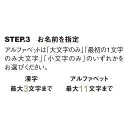 名前オーダー タイル&ステンレス表札 戸建用 座り猫 表札オーダー方法