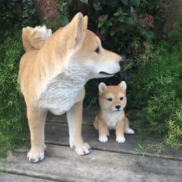 柴犬親子のオーナメント