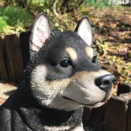 黒柴犬のオーナメント
