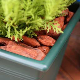 高さ150cm(人工観葉植物ゴールドクレスト) プランター内部に配した天然木バークで雰囲気たっぷり。