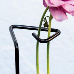プランツサポートロング7本組 花が重く倒れてしまう植物を真っ直ぐ支えます。
