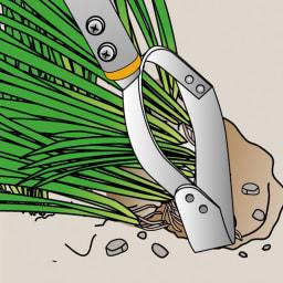 立ったまま作業できるからラク! 雑草取り 刃の角度で使い分けて しつこい雑草は根ごとはぎ取って。