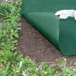 防草シート 4枚組 敷かない地面とこんなに違いが!