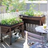 50周年オリジナルカラー菜園プランター ベジトラグ バルコニー 写真