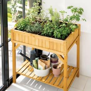 ハーブ用菜園プランター ベジトラグ 大型(8コマ) 写真