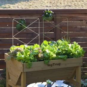 菜園プランター ベジトラグ パネルトレリス 2枚セット 写真