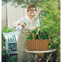 有機JAS規格別表1適合資材バイオゴールド ミスト 1本 「手間なく元気な植物をつくるのにはいちばん。天然活性液だから、無農薬で育てられるのが嬉しいですね」。うどん粉病が気になる植物のケアにも取り入れて。