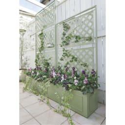 欧風トレリス付きプランターボックス〈セージグリーン〉 高さ161cm テラス部分に高さ違いの2つを並べて、立体的に植栽を楽しめる空間に。※お届けは手前の高さ161cmタイプです。