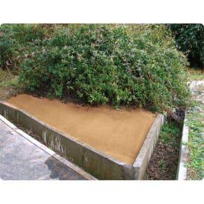 水をかけて固まる土 カチカチ君 写真