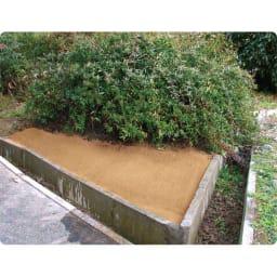 水をかけて固まる土 カチカチ君 (使用後)雑草がたくさん生えていた場所もこんなにきれいに!
