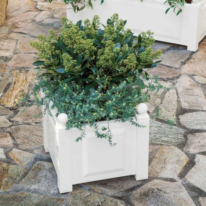 ドイツ製プランター小 (ア)ホワイト プランターに寄せ植えしてポイントづくり。