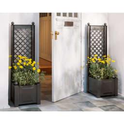 ドイツKHW社製 プランター付きトレリススリム (イ)ダークグレー 幅43cmのスリムタイプは玄関に。