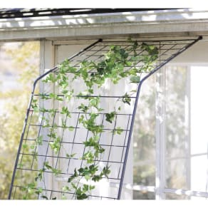 アイアングリーンカーテン〈奥行広々ハイタイプ〉 グリーンカーテン 写真