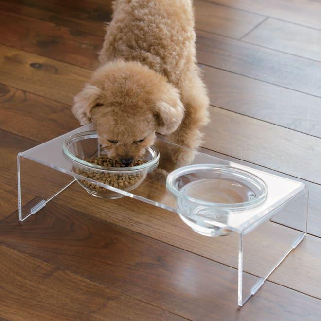 アクリル製ペットフードテーブル Sサイズ 美しいアクリルとガラスの組み合わせで出来たペットフードテーブルです。